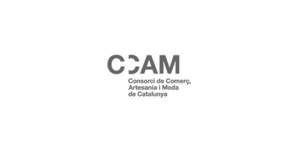 Subvenciones de la Generalitat para la transformación digital