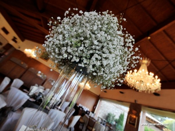 ¡Pon paniculata en tu boda!