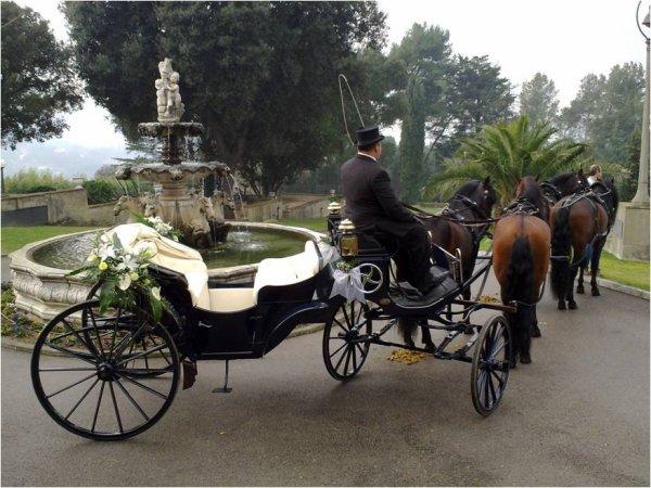 ¡Llega el día de tu boda en un carro de caballos!