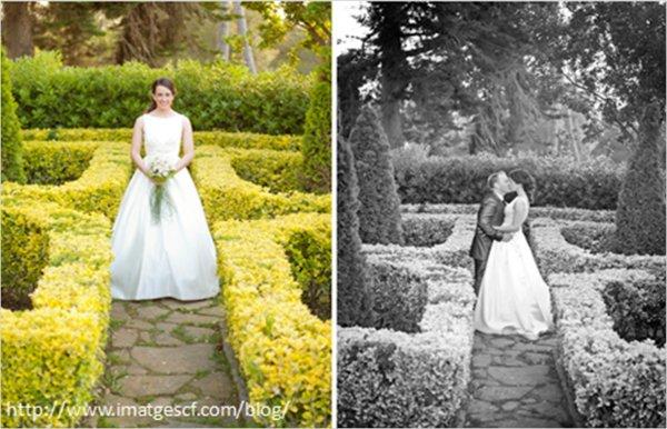 ¿Conoces a nuestros fotógrafos de bodas recomendados?