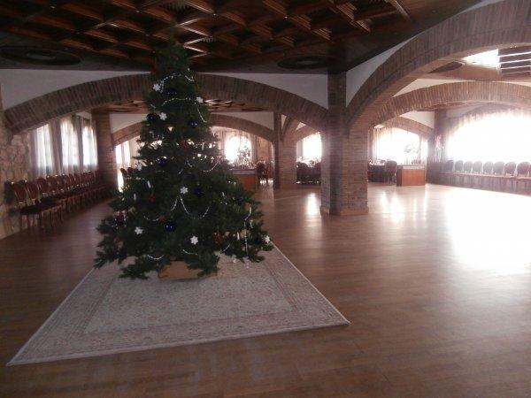 Comida baile de Navidad 2013