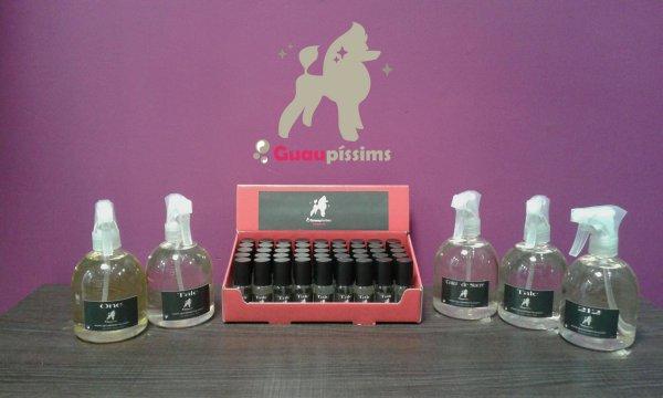 Ja tenim els nous perfums!!