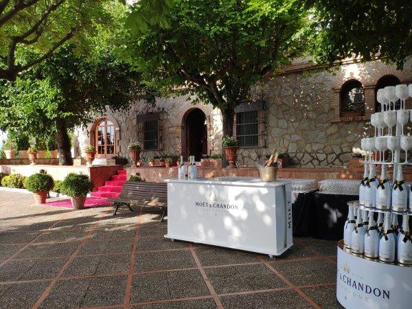 La Agencia Tr�lope organiza un c�ctel de empresa privado en Mas de Sant Lle�